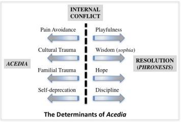 AcediaDeterminants