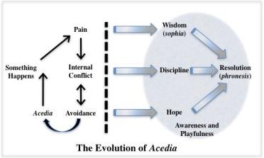 AcediaEvolution