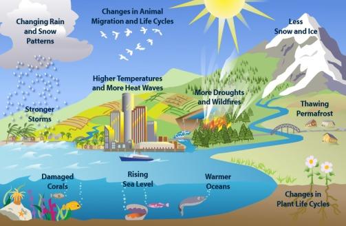ClimateChange7